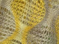 camino bubbles de renaissance dyeing- detail