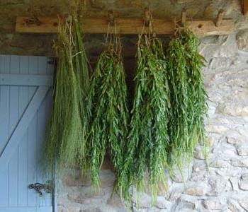 Weld Drying