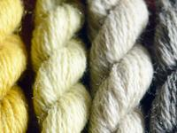wool used for  Renaissance Dyeing's  Camino Bubbles