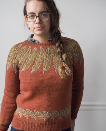 Kea yoke pullover