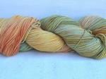 Batch of 100gm Merinos d'Arles - Ghia-soft image