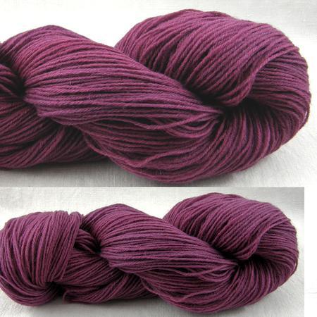 Poll Dorset- Lilac