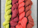 Sale 250m lace-weight set of 4- Autumn image